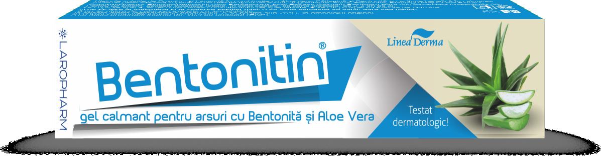 Bentonitin